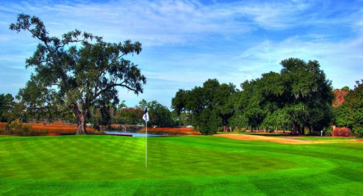 Are You a Swinger? Try North Mount Pleasant Golf