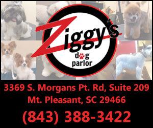 Ziggys Dog Parlor